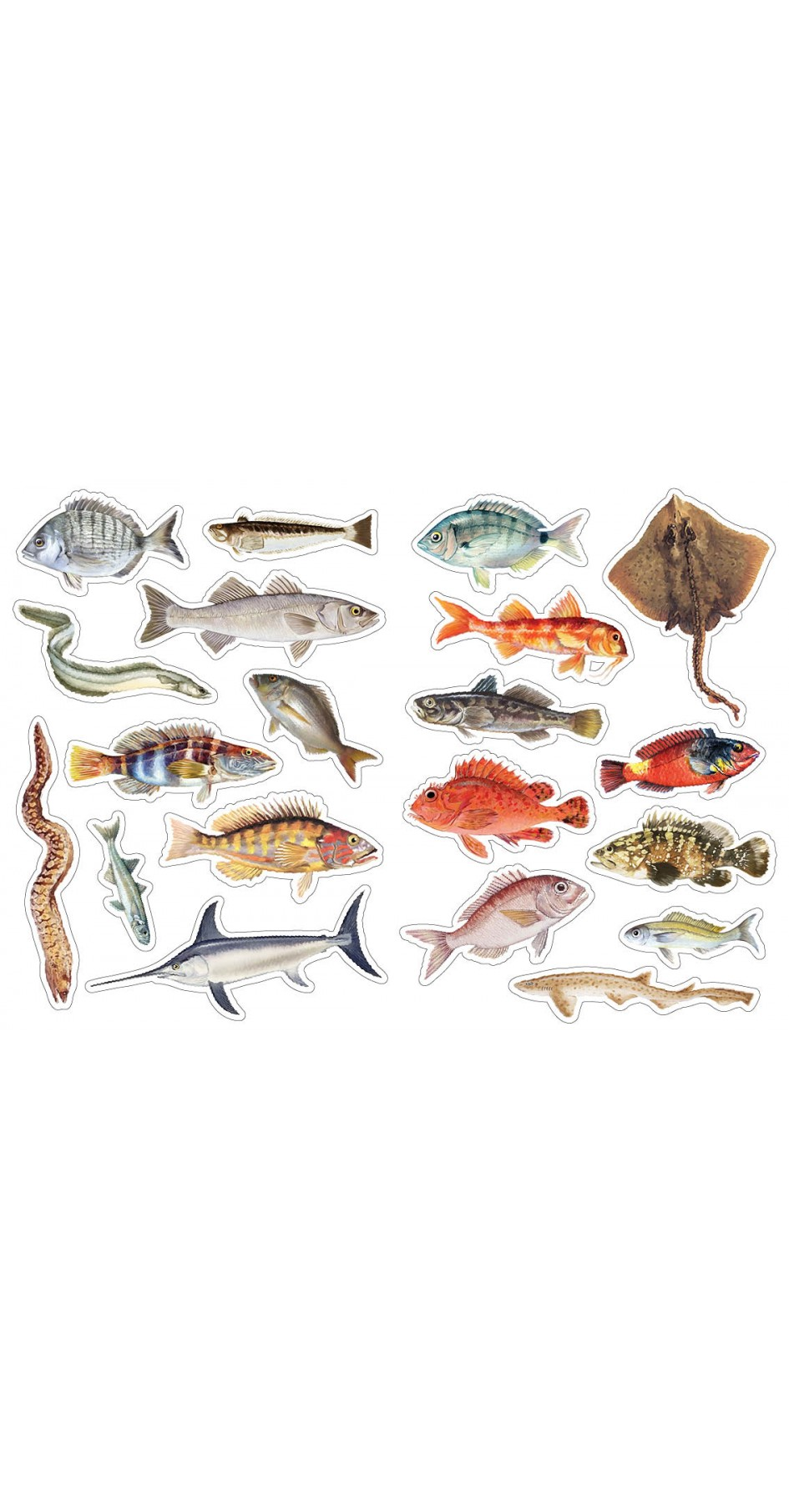 Fish of Greece, Sticker book
