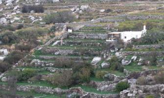 Hiking in Paros footpath 3 from Moni Logovardas to Lefkes