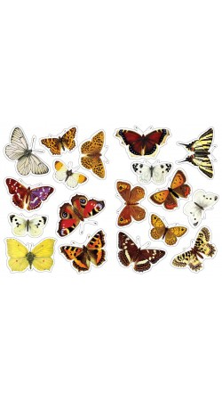 Butterflies of Greece, Sticker book
