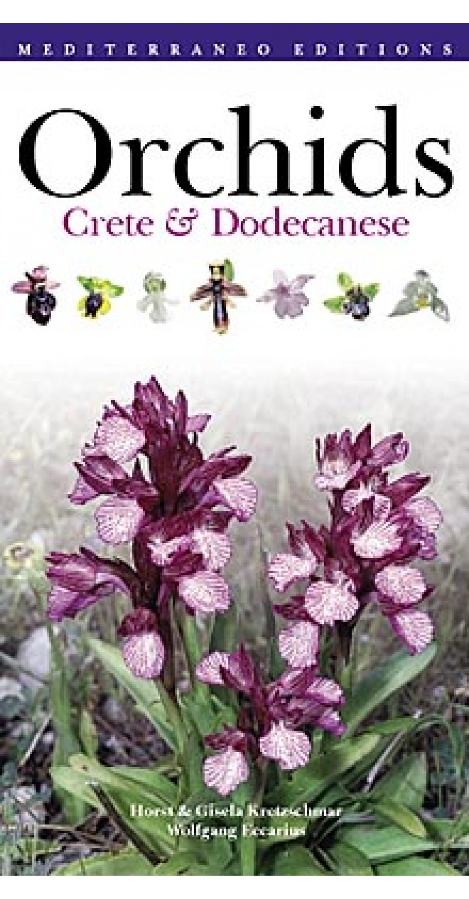 Orchids - Crete & Dodekanese