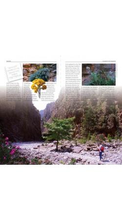 Samaria - The gorge and the White Mountains (Greek)
