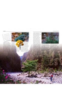 Samaria Die Schlucht und Die Weiben Berge